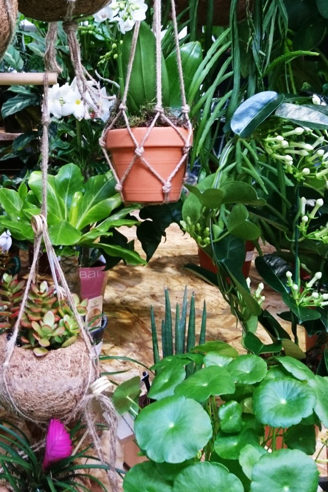 2018 garden trends whats new for your garden the middle
