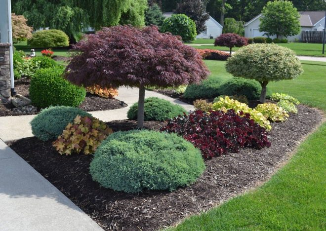 23 landscaping ideas with photosthis site ie this experienced