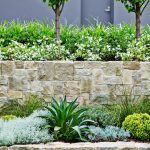 beautiful tiered stone walls softened plantings trees