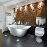 candice olson bathrooms bing images modern bathroom