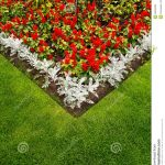 colorful garden flower bed and grass lawn stock photo
