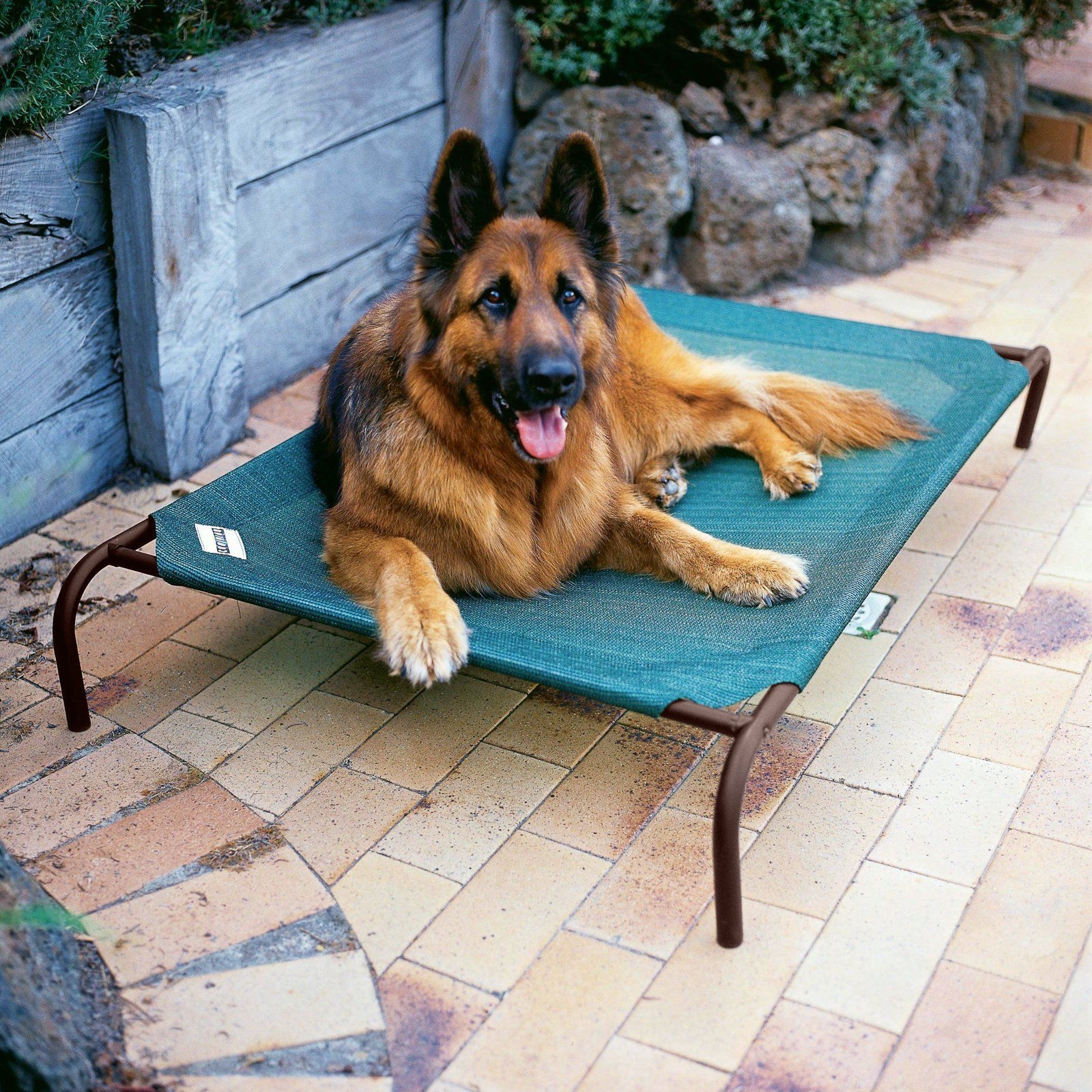 coolaroo elevated pet bed with replacement cover cr063