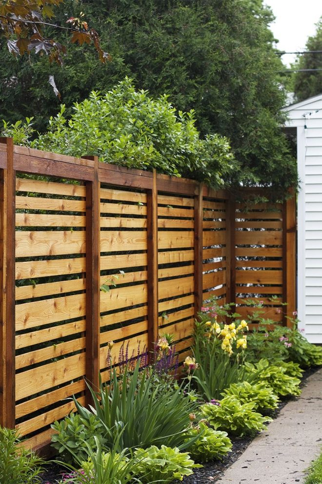 elegant backyard privacy wall the fence i looking so good