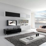 elegant contemporary living room design with grey fur rug and white