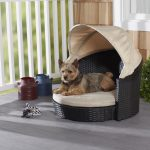enchanted home pet 28 inch arbor outdoor canopy pet bed
