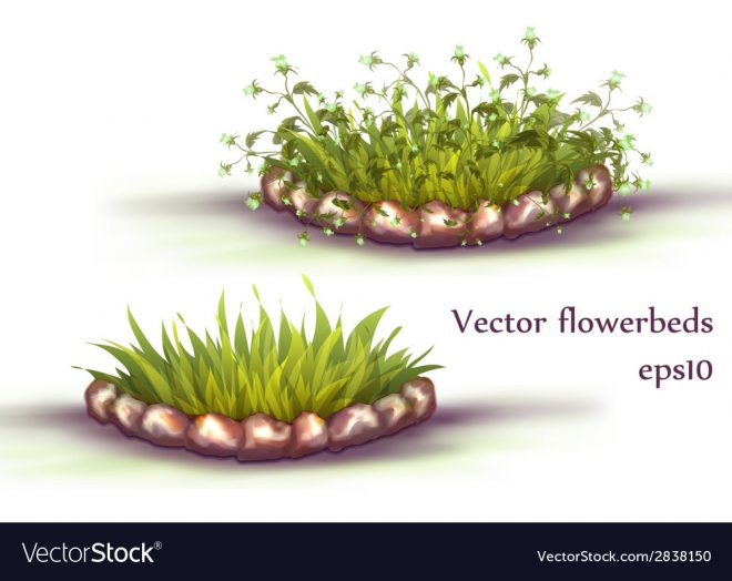 flowerbed with grass and flowers