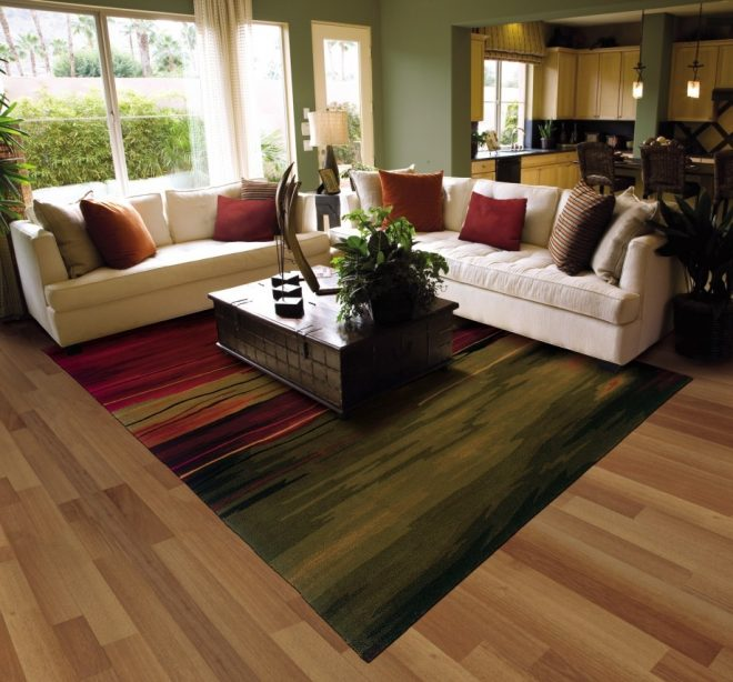 formal living room carpet ideas milioanedeprieteni