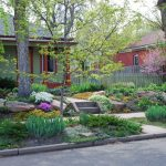 grass alternatives for shady backyards big boulders for structure