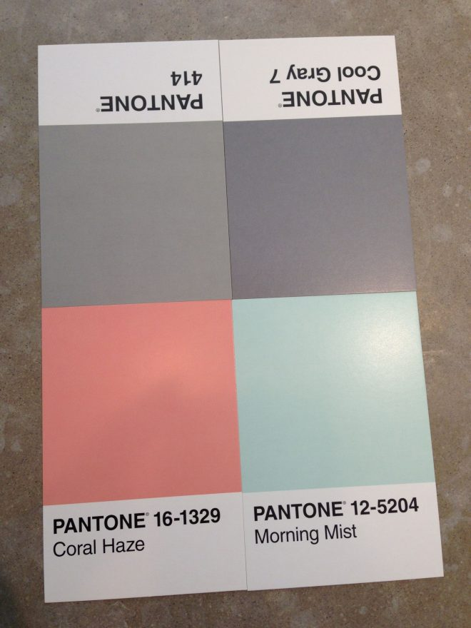 grey coral and aqua paint inspiration for great room