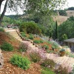 hillside gardening on a slope images pinterest best simple within