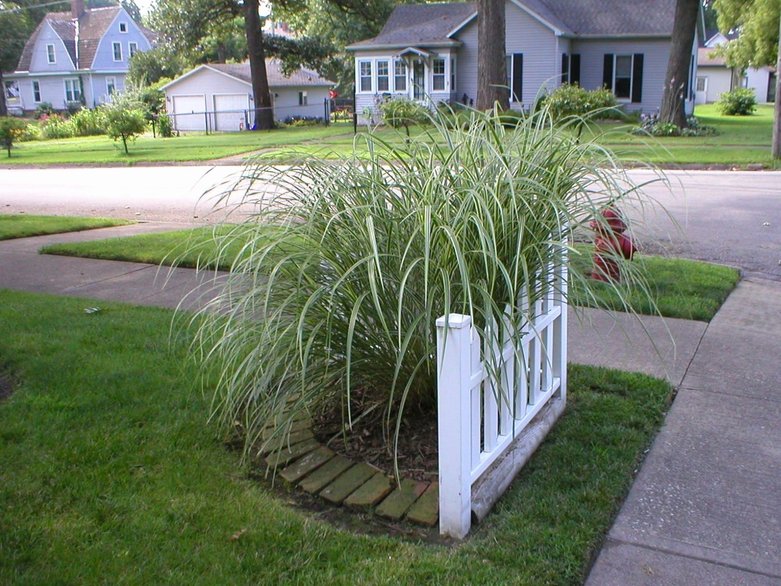 landscape ideas to hide utility boxes inspirational image result for