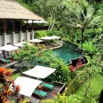 maya ubud resort sandwiched between two sacred rivers ubud