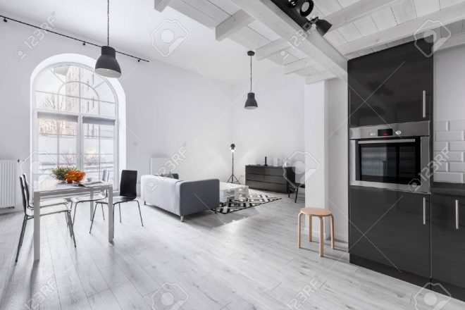 modern apartment in industrial style with kitchen and open living