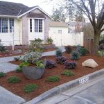no grass landscaping bing images garden design pinte