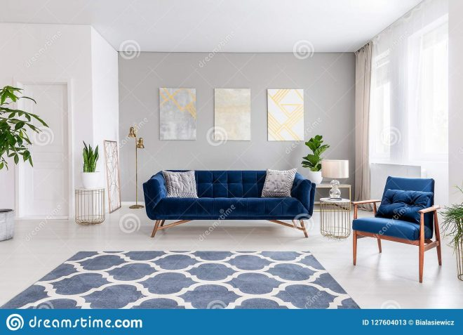 open space living room interior with a navy blue sofa and an
