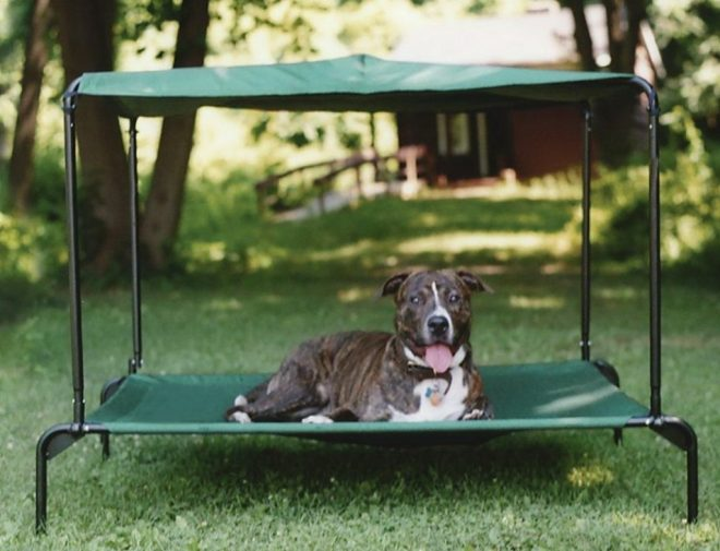 outdoor dog bed with canopy images dog beds diy outdoor