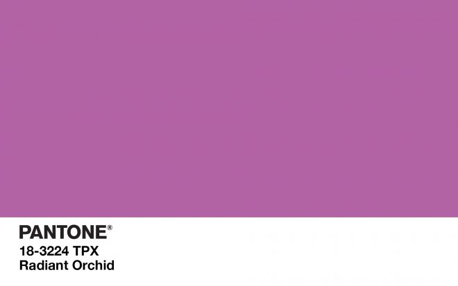 pantone radiant orchid living room cabana home
