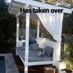 pool daybed outdoor remodel