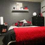 red and gray bedroom went with a black and red colour scheme as a