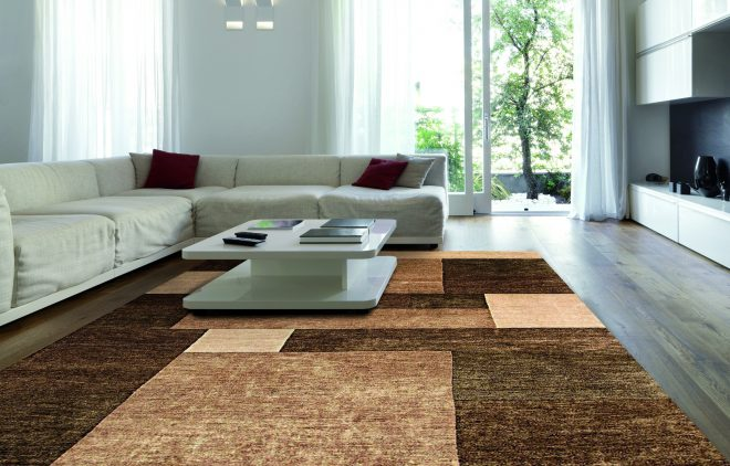 scenic huge rugs for living room inspirationa livingroom excellent
