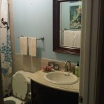 small bathroom no window paint color google search bathroom