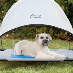 the cool pet cot canopy attaches quickly to any pet cot bed
