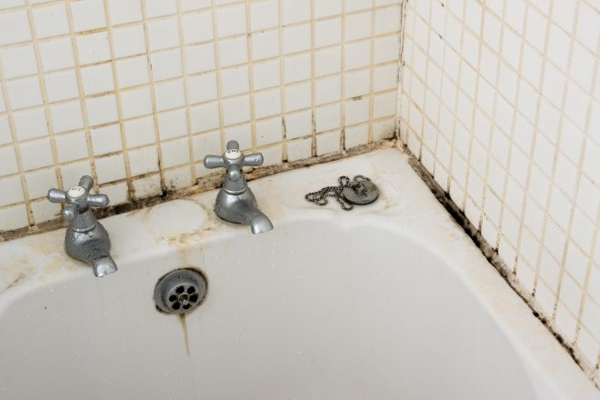 what causes mold growth in bathrooms